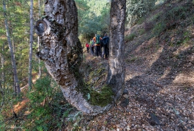 Cascadas de Retumbia por Pedro Laso