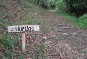 La senda del Cestañero