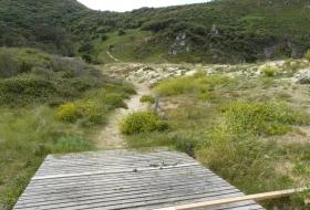 Bunas de Berria