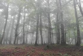 Monte Jiguero
