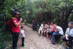 #Natureandoencorto Naturaleza del Buciero