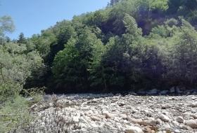 Natureandoencorto: ruta fluvial del Saja