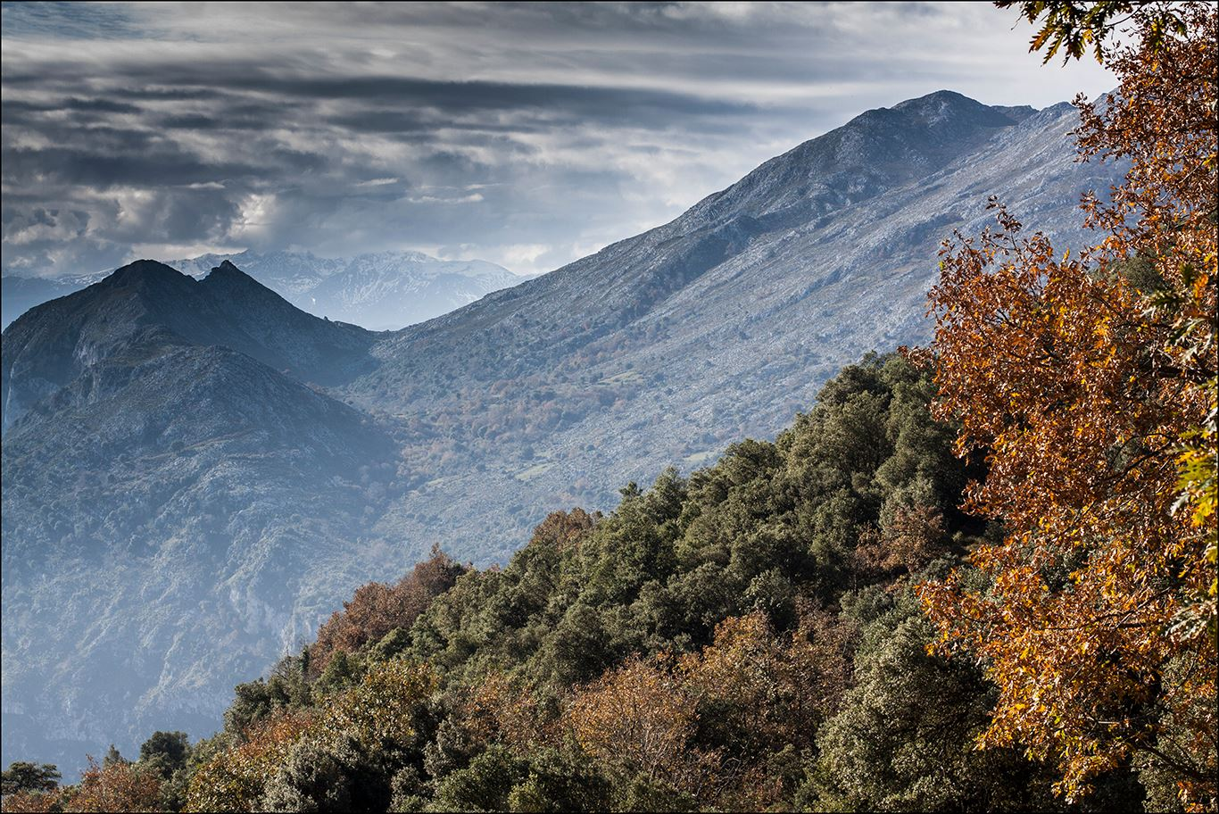 Niñandi, Sierra de Peñarrubia por Antonio Perez