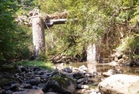 Puente Bujén