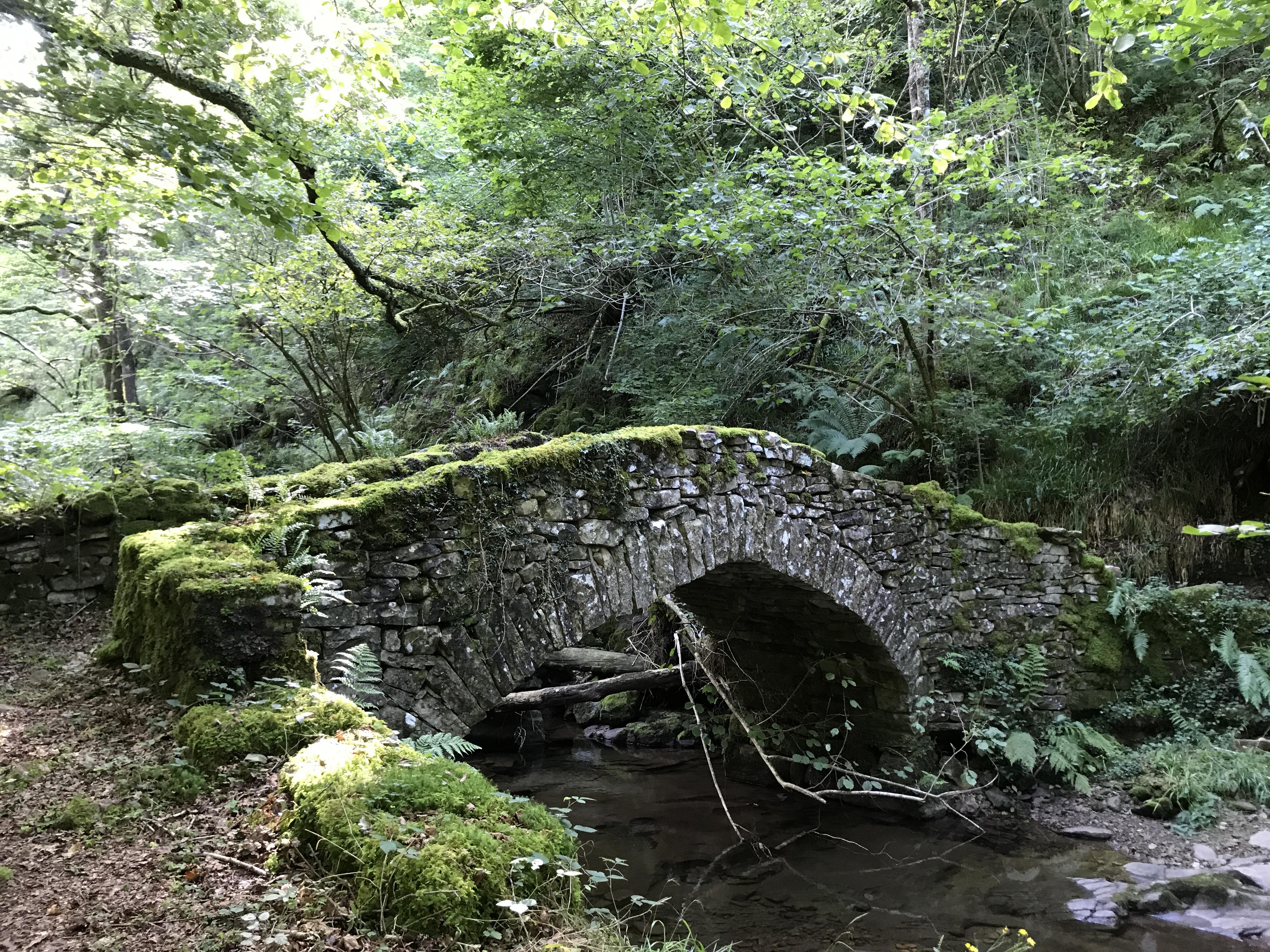 Puentes de Rucabao