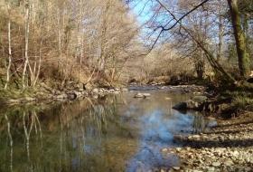Ribera del Aguera