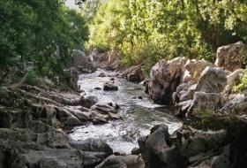 Ribera del Pas