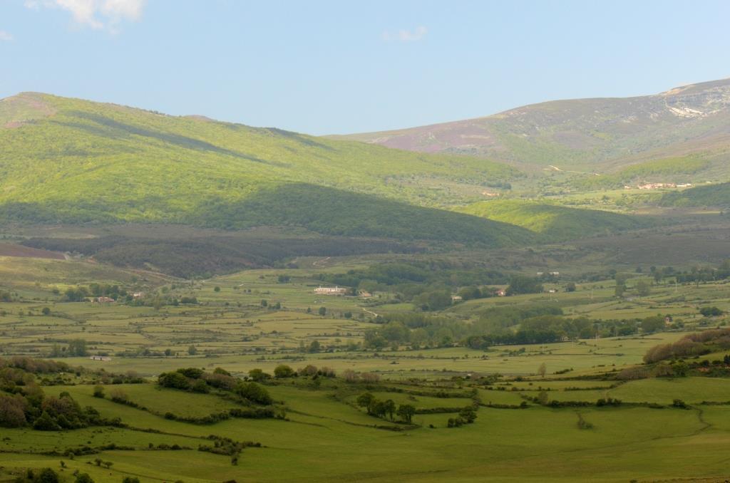 Valle del Camesa