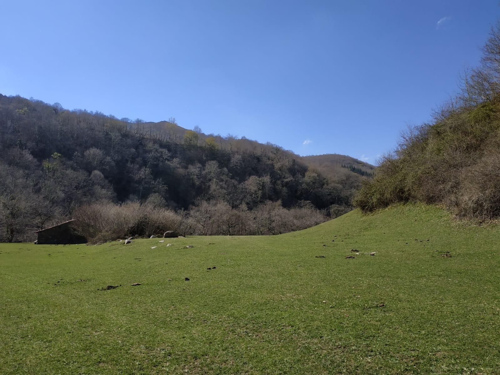 Rio Nansa y Monte de Troncos