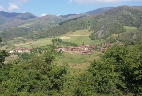 #Natureandoencorto Robledal de Mataseñas
