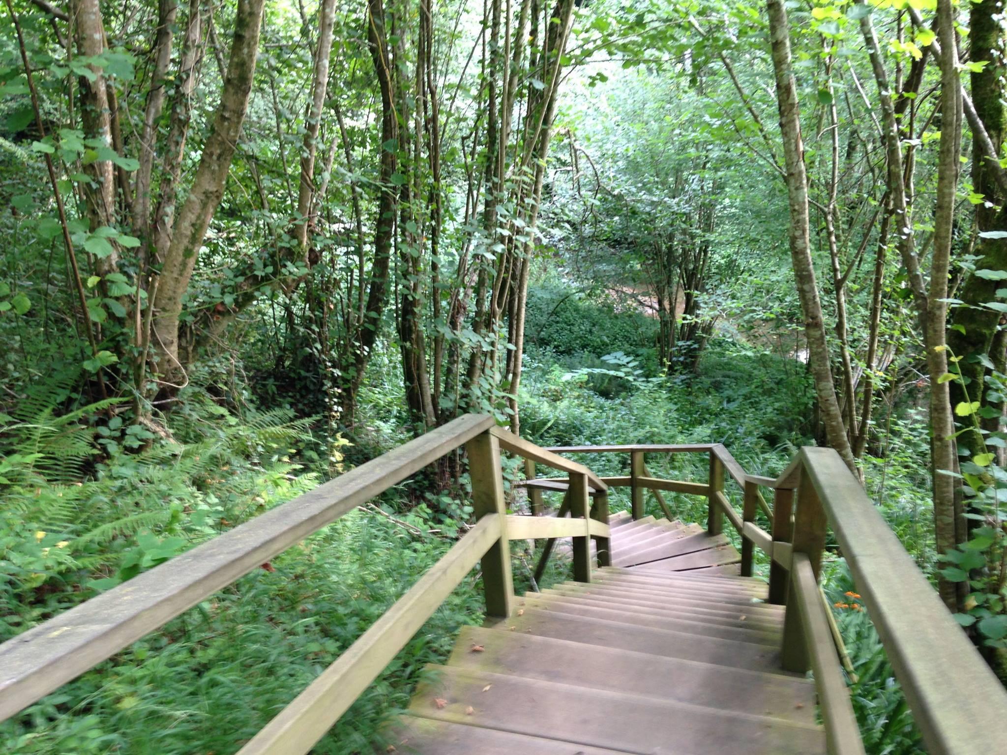Ruta Fluvial del Nansa