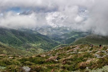 Convocatoria de subvenciones en la Red de Espacios Naturales Protegidos de Cantabria para 2018