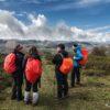 Naturea Cantabria mantiene su actividad: actividades en marcha y Centros de Interpretación abiertos