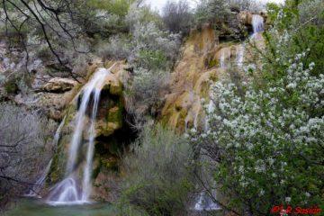 Cascada del Tobazo y su avifauna
