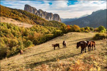Otoño, probablemente la etapa más bella para descubrir los Espacios Naturales Protegidos de Cantabria