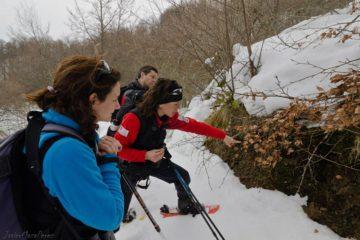 Taller: Huellas en la nieve en la Red Natura 2000 de Liébana