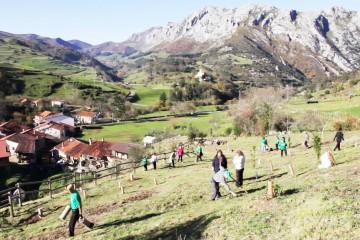 Primeros pasos hacia el parque botánico de Lamasón
