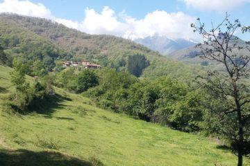 #Natureandoencorto: Pesaguero