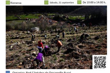 Vigilamos nuestro trabajo: conservación y reposición en la plantación de Cosío