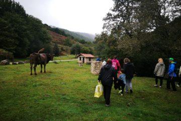 Medio Rural restaurará las principales áreas recreativas del Parque Natural Saja-Besaya