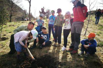 El alumnado del colegio Manuel Llano de Cabuérniga realiza una plantación de árboles en el Parque Natural Saja Besaya