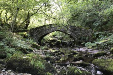 Los Puentes de Rucabao