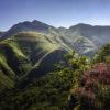 Fotografías ganadoras del concurso de fotografía 'Naturea Cantabria:  Diez Años de Naturaleza y Sensibilización'