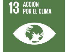 ODS13 - Acción por el clima