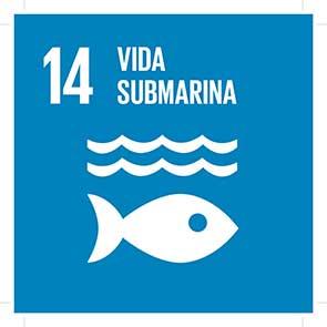 ODS 14 Vida submarina