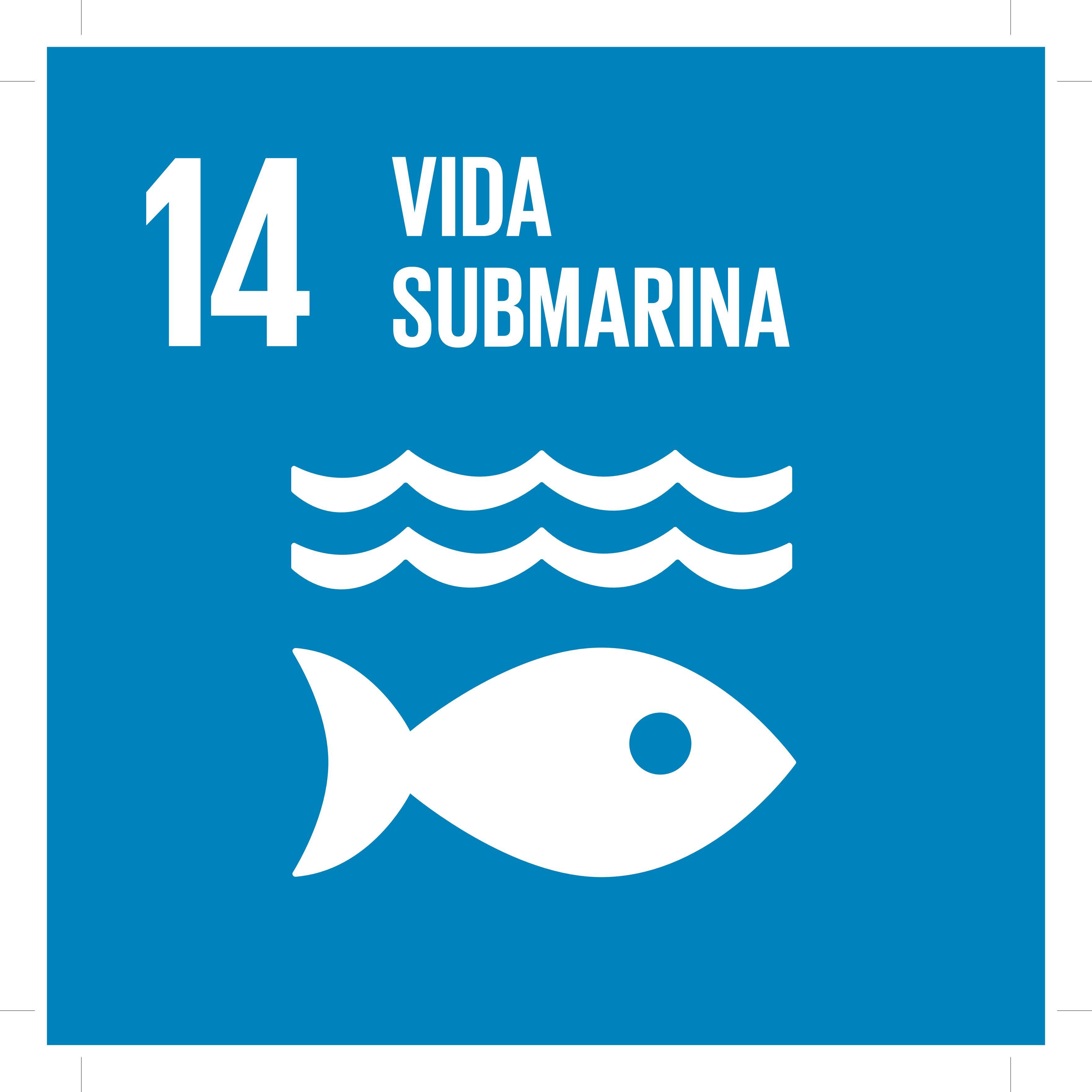 ODS14 - Vida Submarina