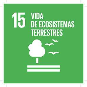 ODS 15 Vida de ecosistemas terrestres