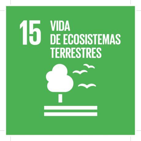 ODS15 - Vida de ecosistemas terrestres