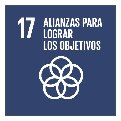 ODS17 - alizanzas para lograr los objetivos