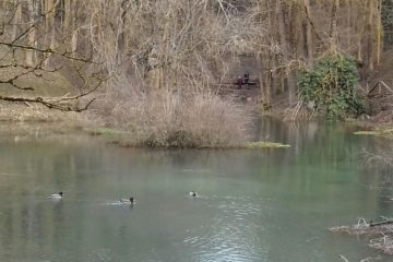 #Natureandoencorto: Cuna del Ebro
