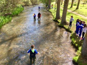 ¡Explora tu río! finaliza la fase de análisis del estado ecológico