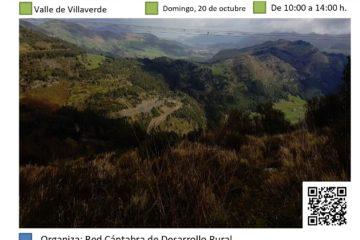 Plantación forestal en Valle de Villaverde. Monte Argomeo