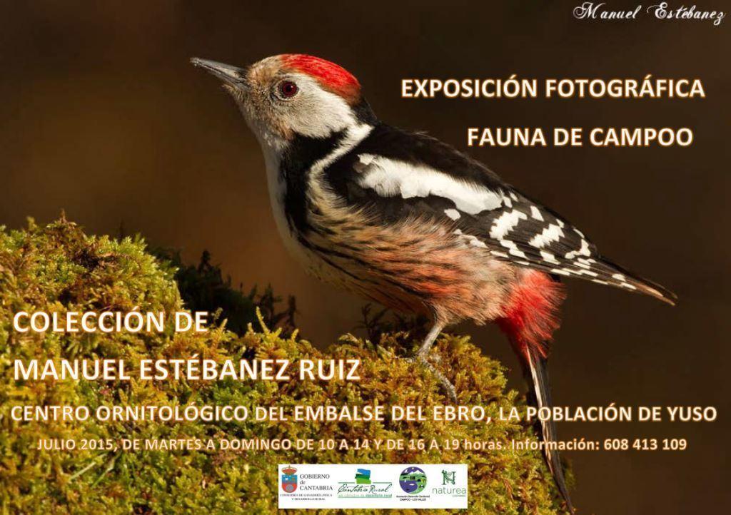 El Centro Ornitológico del Embalse del Ebro alberga durante julio una muestra fotográfica de Manuel Estébanez sobre la fauna de Campoo