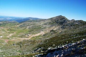 Fauna y flora de alta montaña