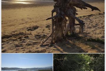 Fotos ganadoras del concurso de ¡Explora tu río! y ¡Explora tu costa!
