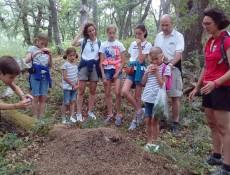 #Natureandoencorto Raspaneras de Cahecho