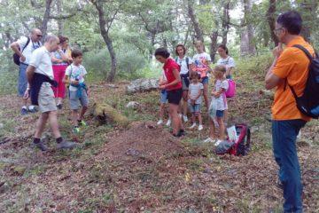 #Natureandoencorto: raspaneras de Cahecho