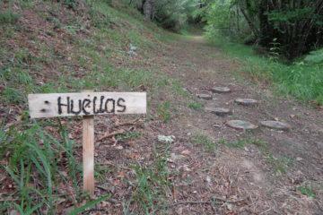 #Natureandoencorto: senda de Cestañeru