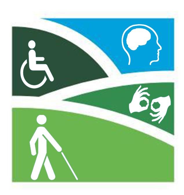 logo accesibilidad solo