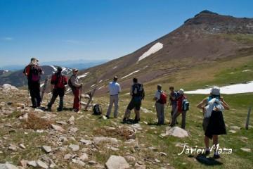 Observación: Fauna de Alta Montaña