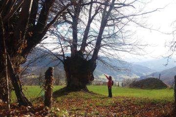 #Natureando en corto: raspaneras de Cahecho