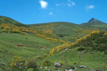 Cantabria aprobará la mayoría de los planes de gestión de los espacios protegidos este año