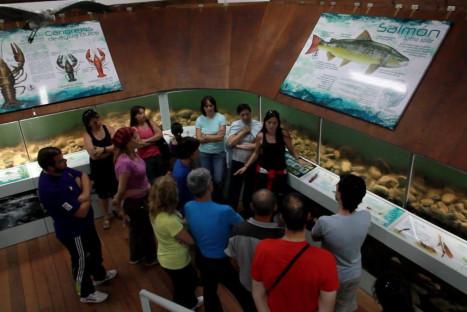 #Natureandoencorto: Centro Ictiológico de Arredondo