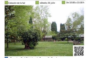 ¿Te animas a construir un hotel de insectos en Cabezón de la Sal? Actividad PROVOCA  Cantabria