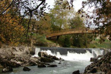 Eliminación de plumero en la Ribera del Río Pas en Puente Viesgo
