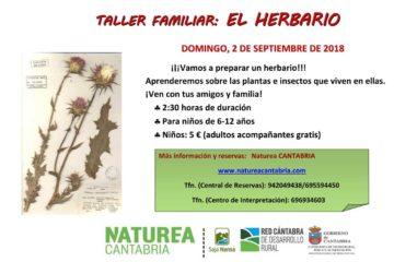 Taller familiar: el herbario